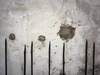 LES GARDIENS . 40 bâtons-lances en bois de noisetier calcinés